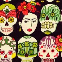 Tela 217 Frida berenejna